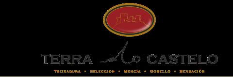 terra do castelo,Bodega Coop. San Roque de Beade,dialgava,bodega,vino,tinto,blanco,mencia